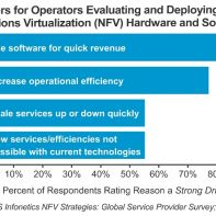 NFV growth strategy