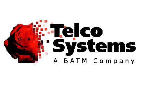Telco systems Logo