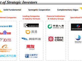 China Unicom Strategic Investors