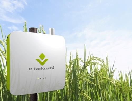 e-kakashi project from SoftBank